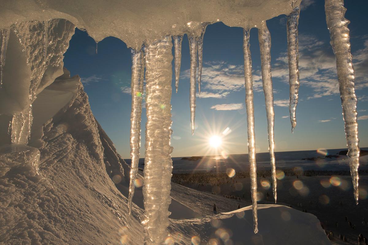 Stalactites en Antarctique